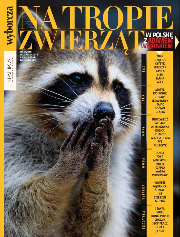 Nauka Dla Każdego Extra E Wydanie E Prenumerata Gazeta Online